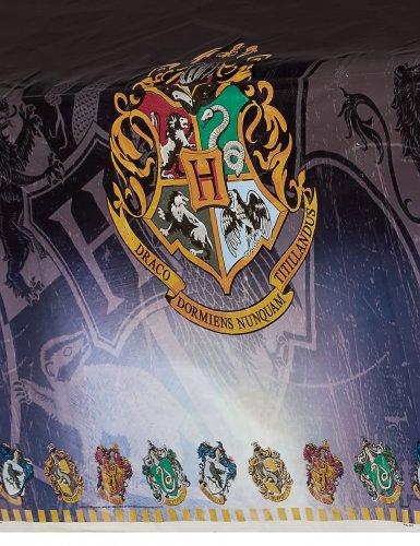 Tovaglia in plastica Harry Potter™-1