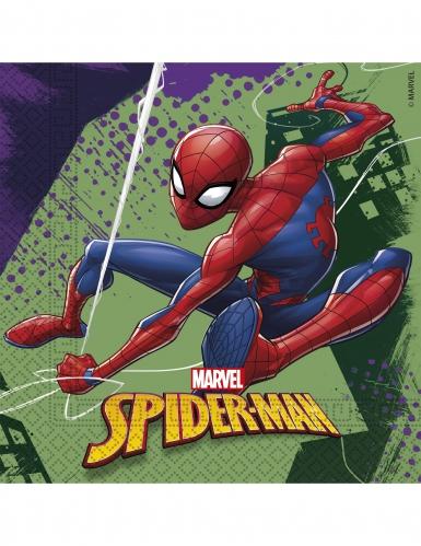 20 Tovaglioli in carta 33 x 33 cm Spiderman™