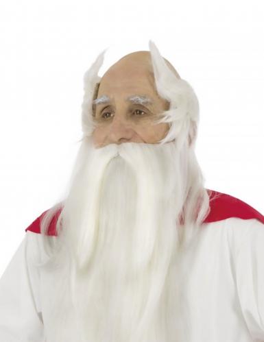 Parrucca e barba Panoramix™ Asterix e Obelix™