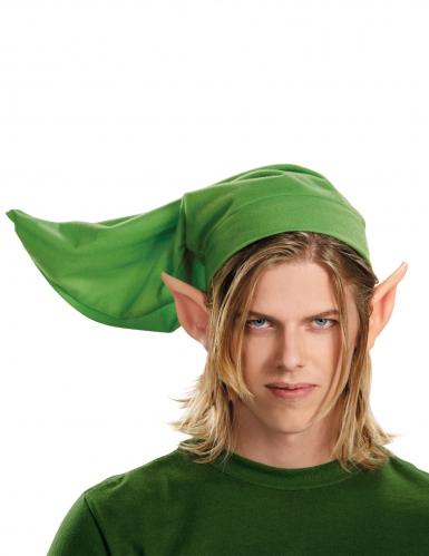 Kit Link adulto Legend of Zelda™