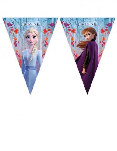 Ghirlanda festoni Frozen 2™ 230 x 25 cm