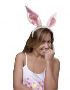 Orecchie da coniglio adulti