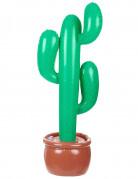 Cactus gonfiabile