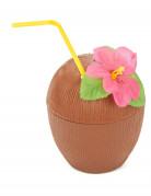 Noce di cocco Hawaii