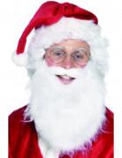 Barba da Babbo Natale uomo