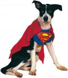 Costume Superman™ per cani o gatti