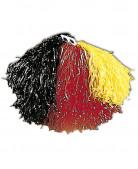 Pompon tifoso Germania