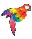 Decorazione pappagallo