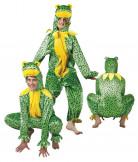 Costume rana adulto