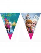 Ghirlanda Frozen-Il Regno di Ghiaccio™