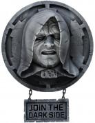 Decorazione murale Imperatore Palpatine - Star Wars™
