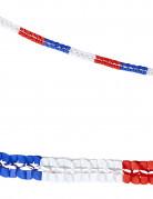 2 Ghirlande di carta tricolori Francia
