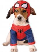 Costume per cani da Spiderman™