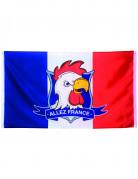 Bandiera Allez France! 90 x 150 cm