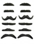 12 Paia di baffi neri