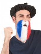 Barba da tifoso della Fracia