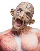 Maschera da stregone putrefatto per adulto