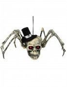 Teschio ragno decorativo con cappello halloween