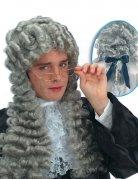 Parrucca da giudice grigia per uomo
