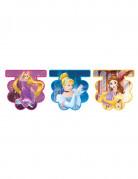 Ghirlanda di bandierine delle principesse Disney™
