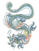 Tatuaggio temporaneo dragone per adulto