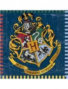 16 tovaglioli in carta Harry Potter™