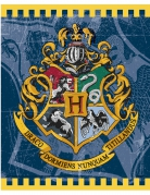 8 Buste compleanno Harry Potter™